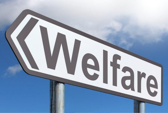 Even in these dire times, welfare chauvinism is a pervasive public opinion where a considerable share of native-born citizens would like to treat recent immigrants as second-class citizens when it comes to hospital treatment for acute COVID-19.